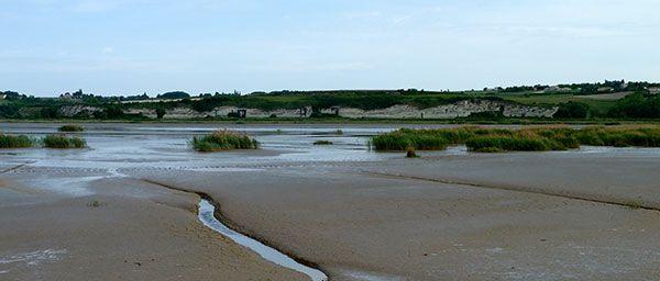 Marais de Mortagne-sur-Gironde